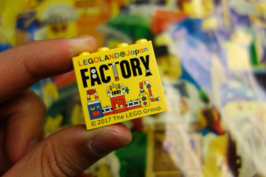 出来立てホヤホヤ(?)のレゴ・ブロック